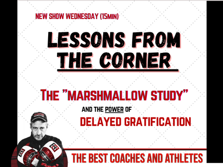 """The Marshmallow Study"" and The Power of Delayed Gratification"