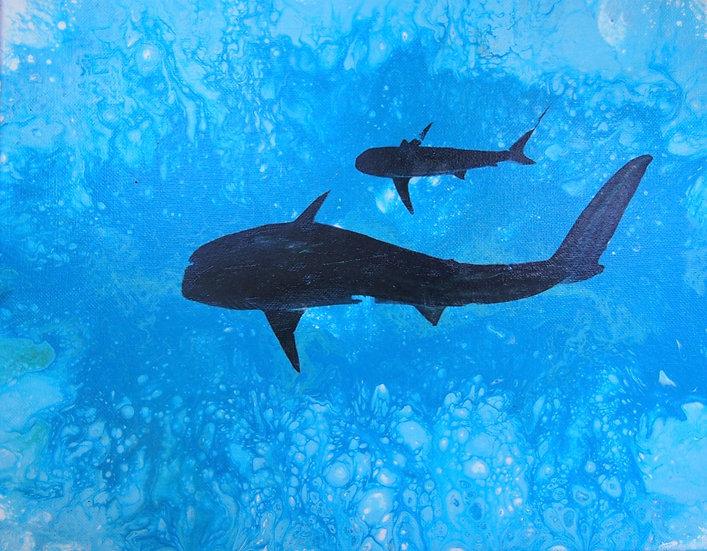 Tiger Shark and Reef Shark buddies