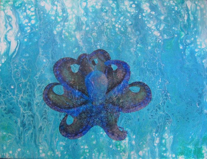 Octopus inTurquoiseWaters