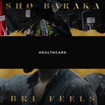 Healthcare - Single _ Sho Baraka.jpeg