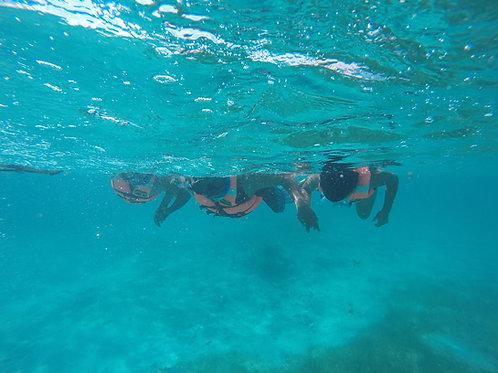 Tour de snorkel local