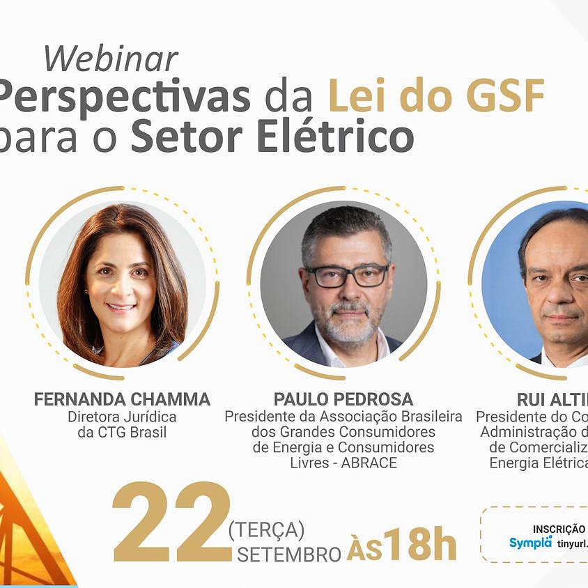 Perspectivas da Lei do GSF para o Setor Elétrico