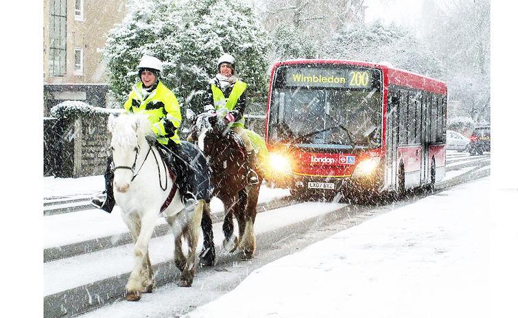 Horses in Wimbledon.jpg