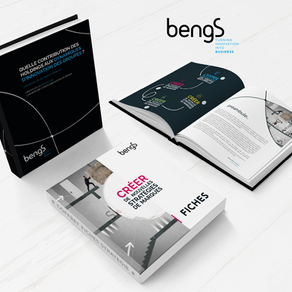 BENGS // Création d'une collection de Livres Blancs