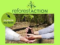 je plante un arbre reforest action impri
