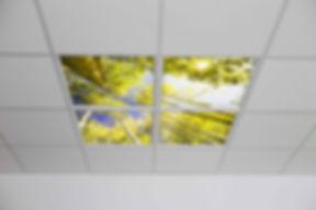showroom-005.jpg