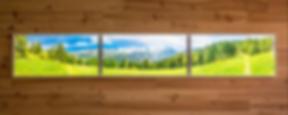Panoramique 3.60m x 0.60m en 3 dalles 1.20m x 0_edited.png