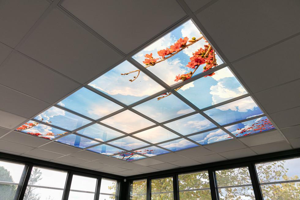 Plafond led décoré Ciel/ nature