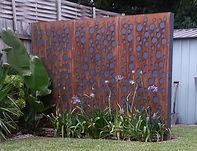 Rust Screen Sir Walter Buffalo Instant Grass