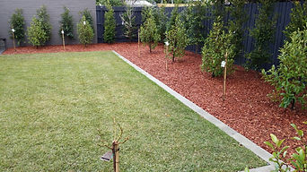 Palmetto Instant Turf and Planting