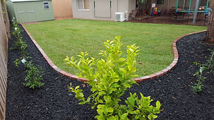 Instant grass
