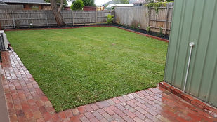 Instant grass Cheltenham Vic