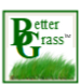 Better Grass.png