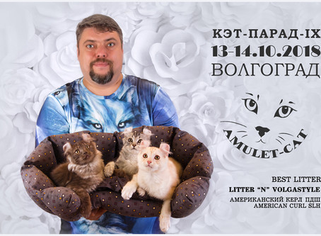 Выставка 13-14 Октября 2018г. (Волгоград, WCF)