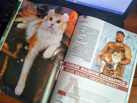 """Звёздный кот - Dodge Magnum Volgastyle. Интервью для журнала """"Кошки-Info""""."""