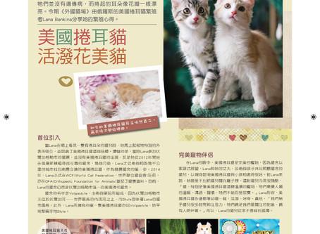 О нашем питомнике в журнале о кошках Cats Life (Гонг-Конг).