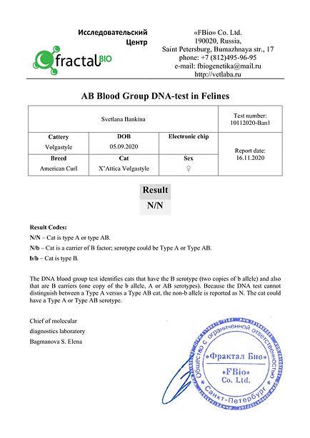 10112020- Ban1 Blood-2.jpg