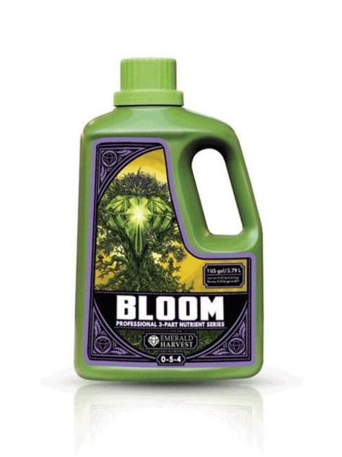Bloom 23L