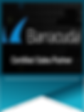 Barracuda Sales Partner Banner1.png