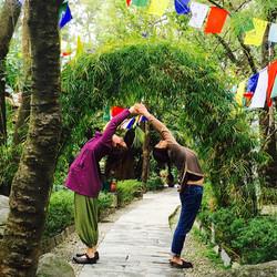 Yoga @ Norbulingka, Dharamshala