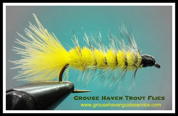 Yellow Wooly Bugger
