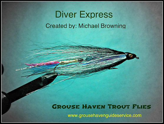 Diver Express