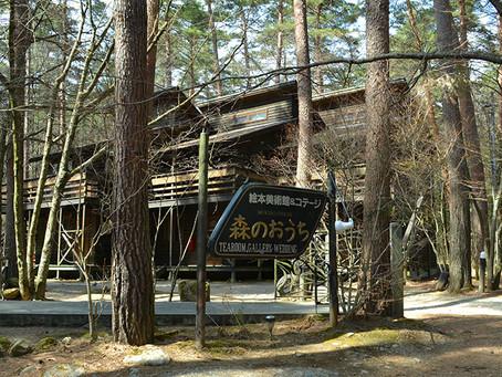 森の中に佇む「絵本美術館 森のおうち」@長野