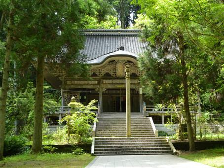 樹齢千年のイチョウが有名「上日寺」@富山