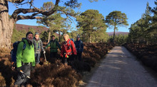 Creag Bhalg Day Walk