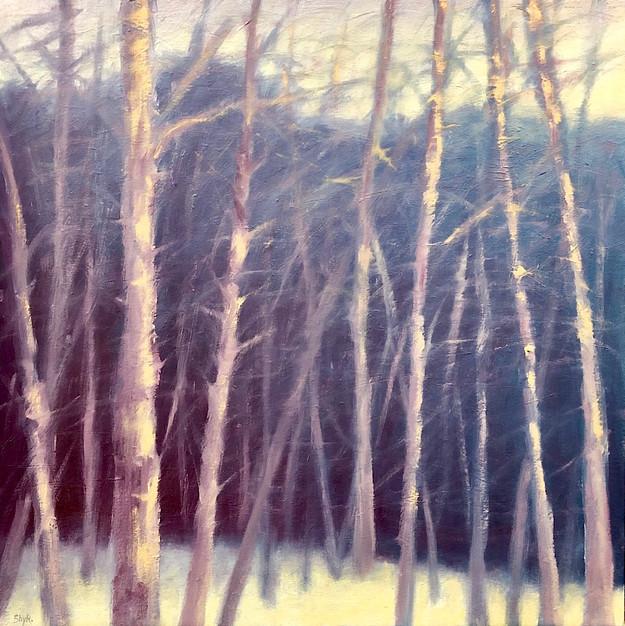 Winter Woods, 2019