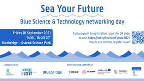 Sea Your Future brings together students and offshore energy actors