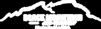 web 2020 logo.png