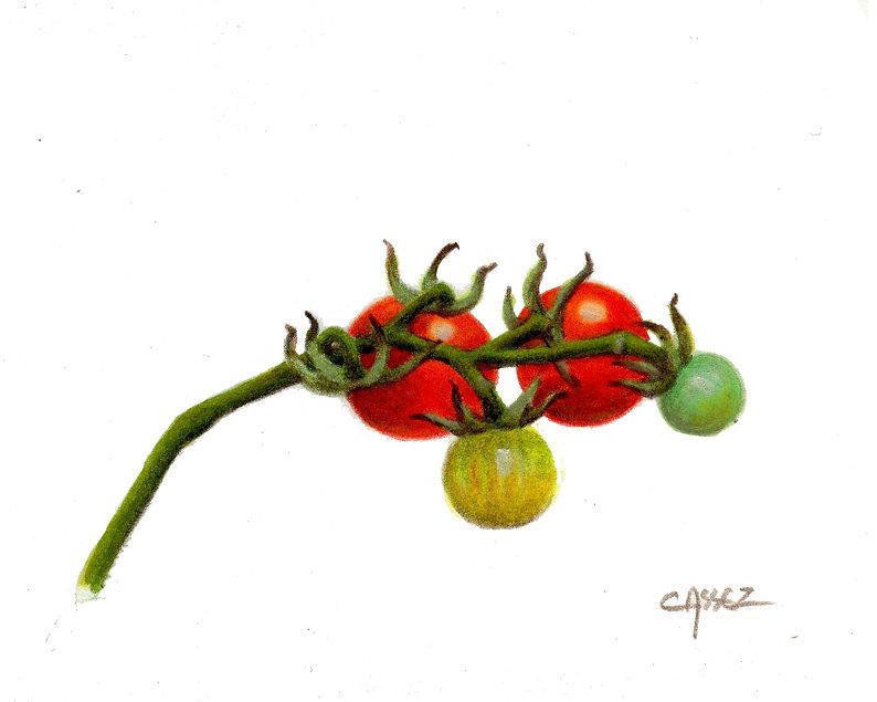 tomates cerises.jpg