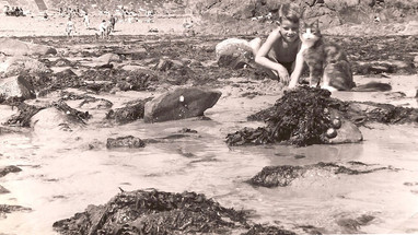 Author and Snooky on beach 1956 .  Note pebbles up by the seawall, high sand levels, and abundance of shellfish on rocks. (Photo - Malcolm Cabeldu)