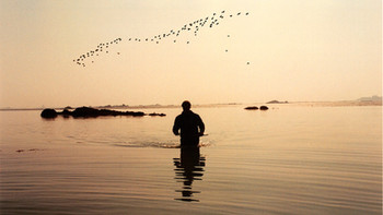 Low Water Fishing Violet Bank  - Dave Cabeldu