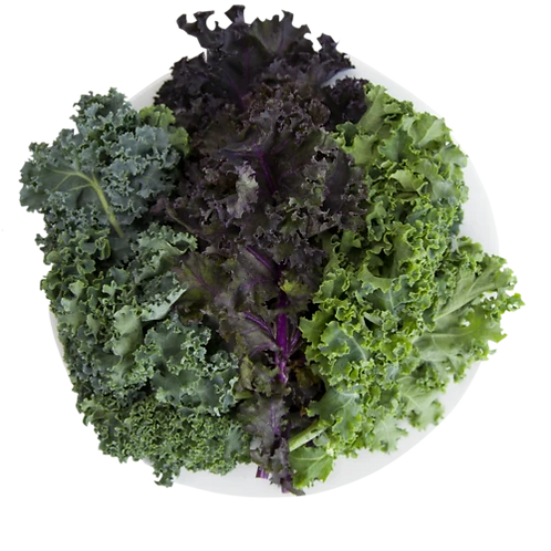 Just Vertical Kale Powered
