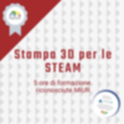 Stampa 3D per le STEAM.png