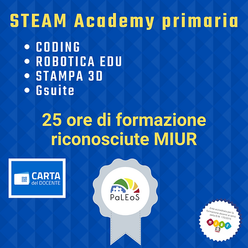 STEAM Academy primaria