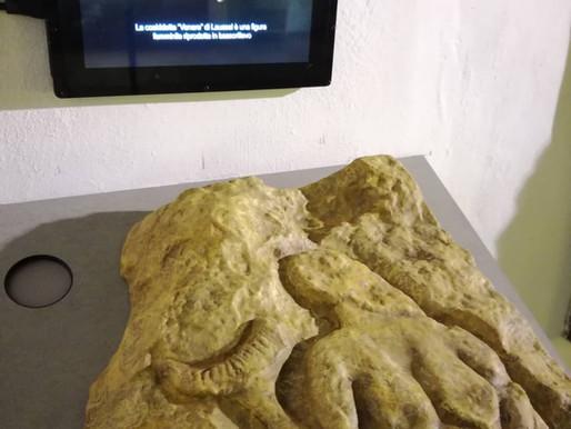 """Museo di Preistoria """"Paolo Graziosi"""" di Firenze"""