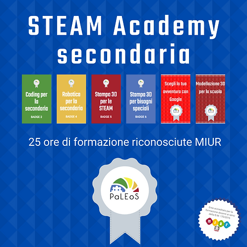 STEAM Academy secondaria