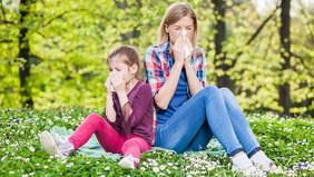 Поллиноз в век аллергии.