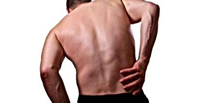 дефанс мышц спины.jpg