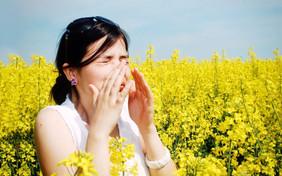 Врачи-гигиенисты, специалисты Роспотребнадзора дали рекомендации пациентам с сезонной аллергией