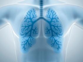 Врачи общей практики смогут помочь в борьбе с эпидемией заболеваний легких