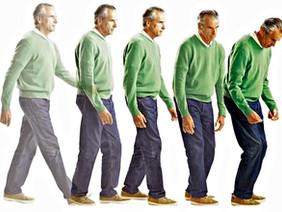 Паркинсонизм, болезнь Альцгеймера и аппендэктомия.