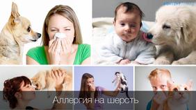Животные в доме и аллергия у детей