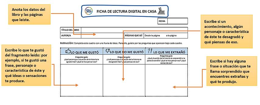 ficha.png