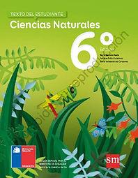 Ciencias_Naturales_6º_básico._Texto_de