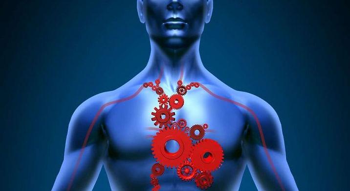 דלקת קרום הלב.jpg