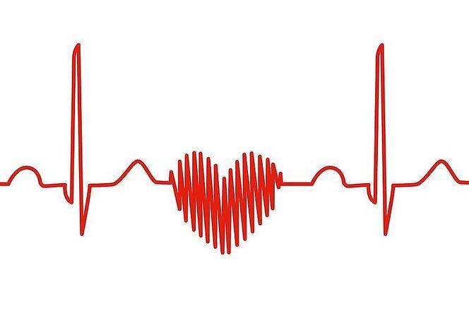 דם לב.jpg